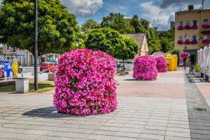 Spójrz na miasto przez różowe okulary