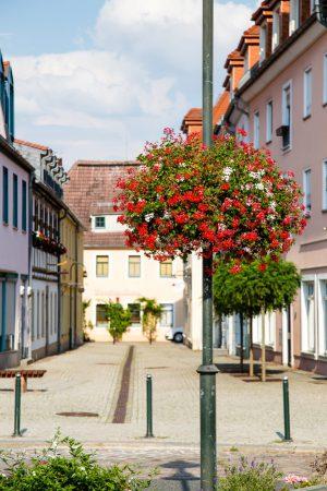 wiszące kwietniki terra group zieleń miejska 20 Wilsdruff niemcy
