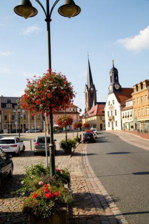 wiszące kwietniki terra group zieleń miejska 23 Wilsdruff niemcy