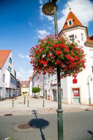 wiszące kwietniki terra group zieleń miejska 28 Wilsdruff niemcy