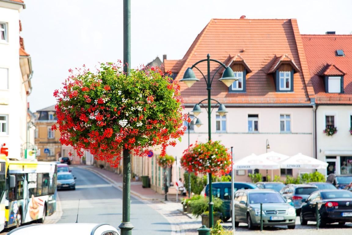Za granicą jak w domu. Europa rozkwita z roślinnymi dekoracjami