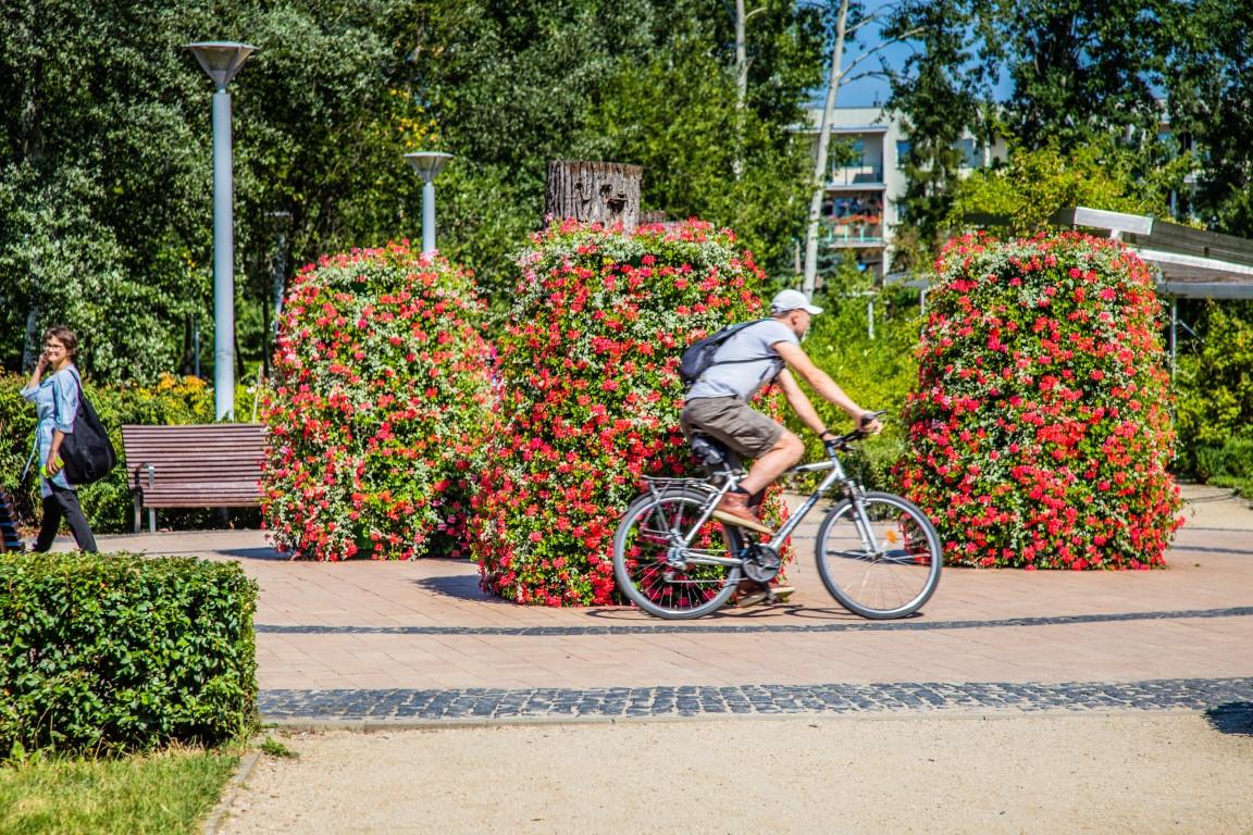 Kwiatowe dekoracje w parkach