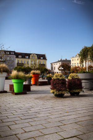 jesienne nasadzenia donice miejskie kwietniki miejskie meble miejskie września