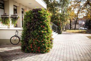 wieże kwiatowe ażurowe dekoracje kwietniki miejskie terra jesień śmigiel 2