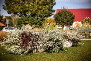 wieże kwiatowe ażurowe dekoracje kwietniki miejskie terra jesień śmigiel 24