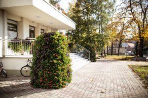 wieże kwiatowe ażurowe dekoracje kwietniki miejskie terra jesień śmigiel 9