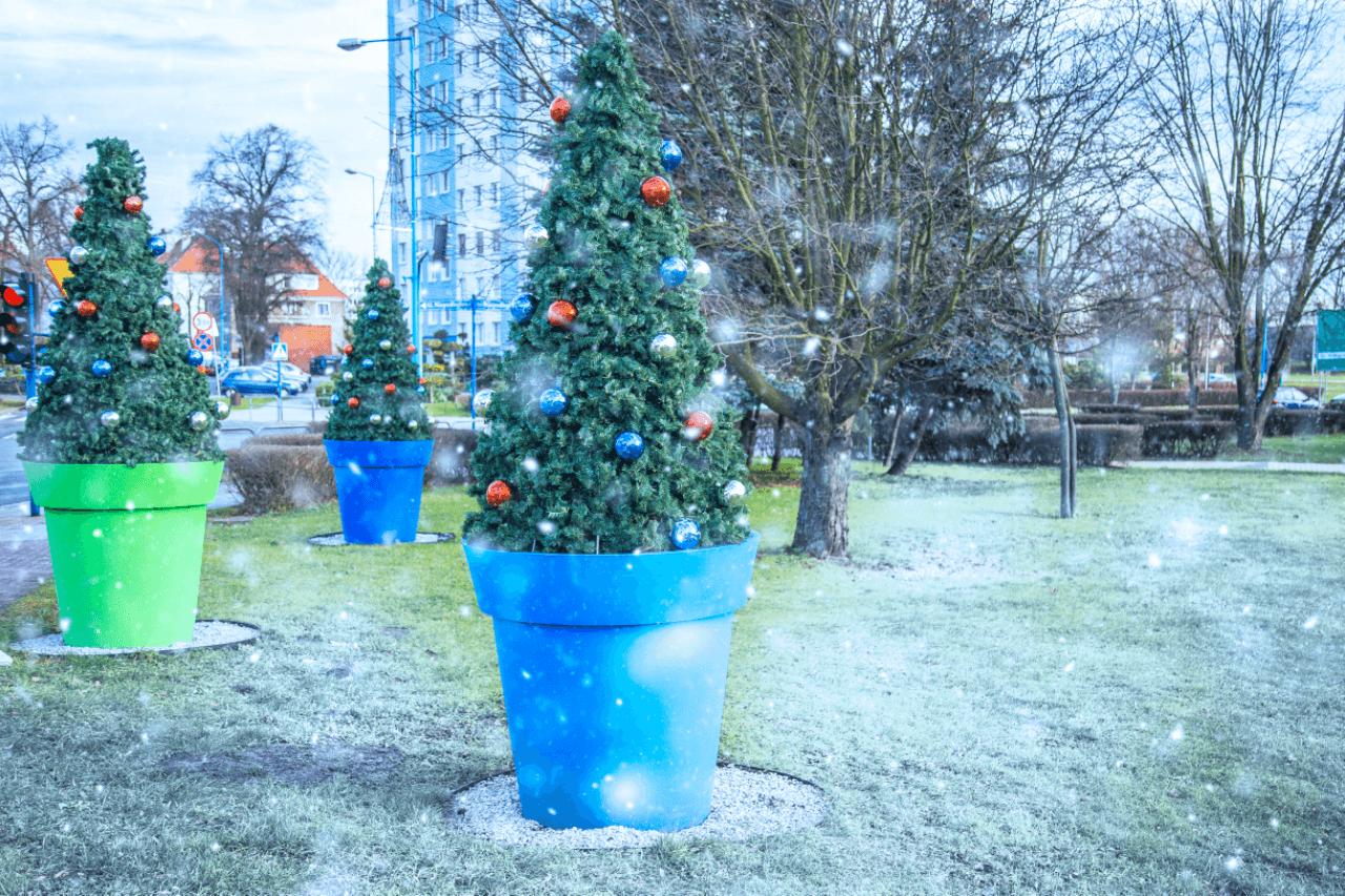 Jak przekształcić donice miejskie w świąteczne dekoracje miejskie?