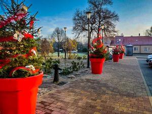 duże donice - człopa świąteczne dekoracje