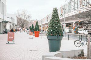 świąteczne dekoracje wielkie donice donice miejskie terrachristmas terraform lugwigsfelde
