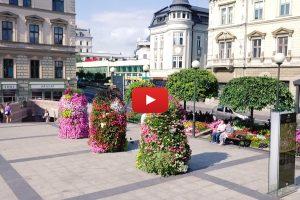 Twoje piękne miasto – Bielsko-Biała. Zobacz film