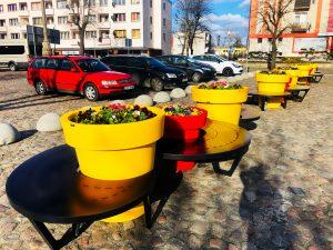 Dębno w słonecznych barwach - mała architektura rozkwita na wiosnę