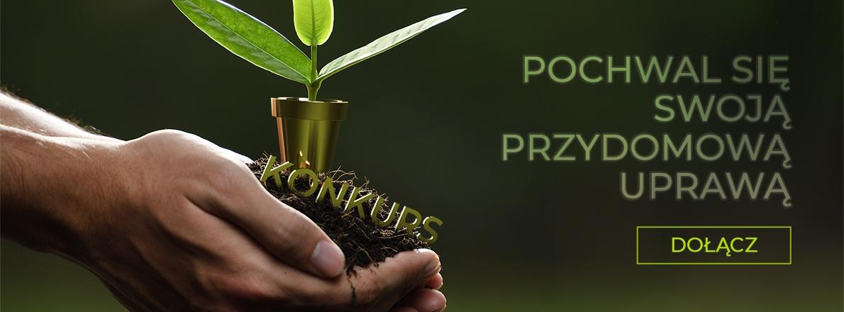 Konkurs – pochwal się swoją przydomową uprawą!