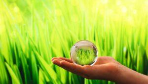 Greencoin - zielona waluta dla mieszkańców Gdańska