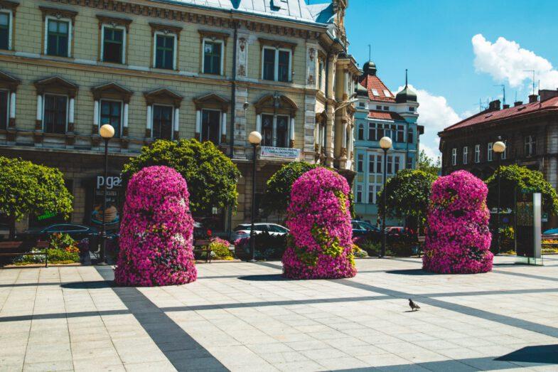 bielsko biala terra flower power lawki miejskie wieze kwiatowe 2