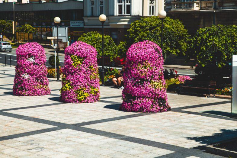 bielsko biala terra flower power lawki miejskie wieze kwiatowe 3