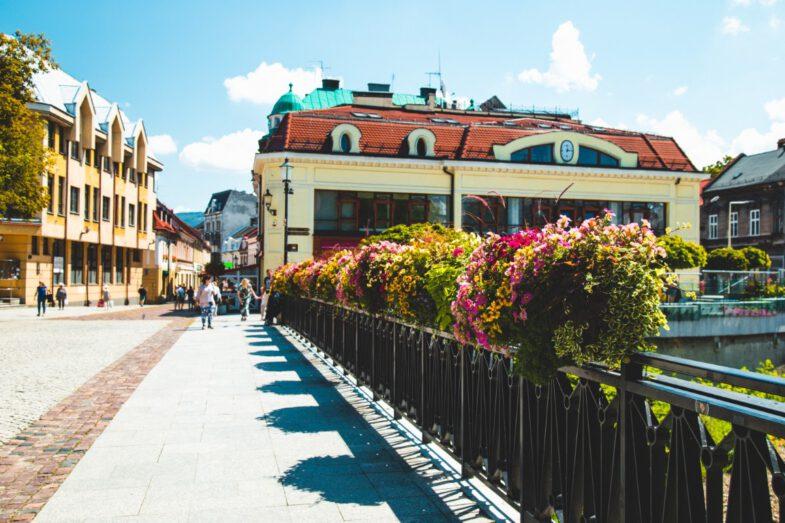 bielsko biala terra flower power lawki miejskie wieze kwiatowe 7