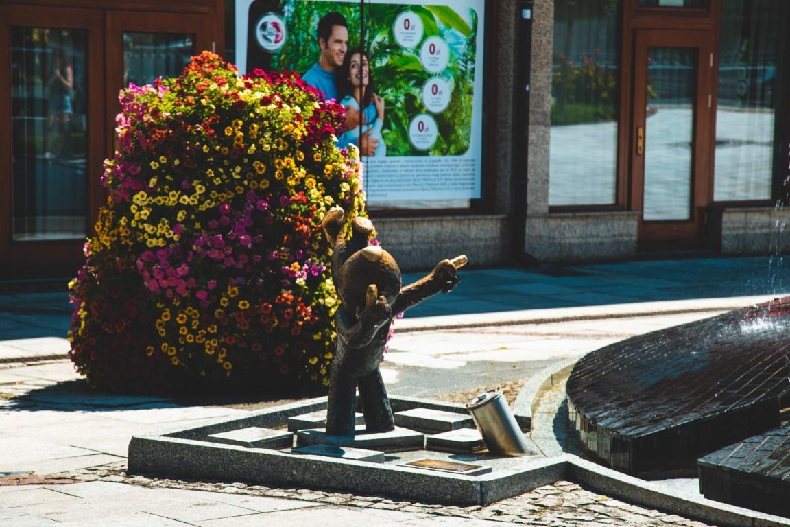 bielsko biala terra flower power lawki miejskie wieze kwiatowe 8