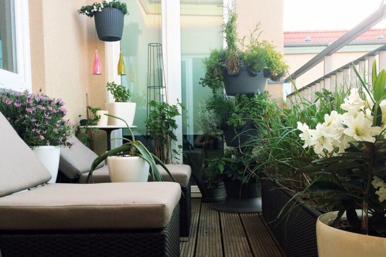 doniczki-na-balkon