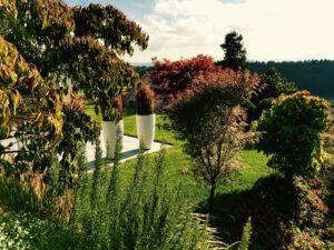 Jesień to dobry czas na zakładanie ogrodu