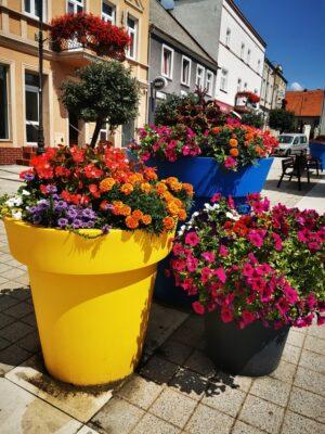 duze-donice-miejskie-kompozycje-kwiatow