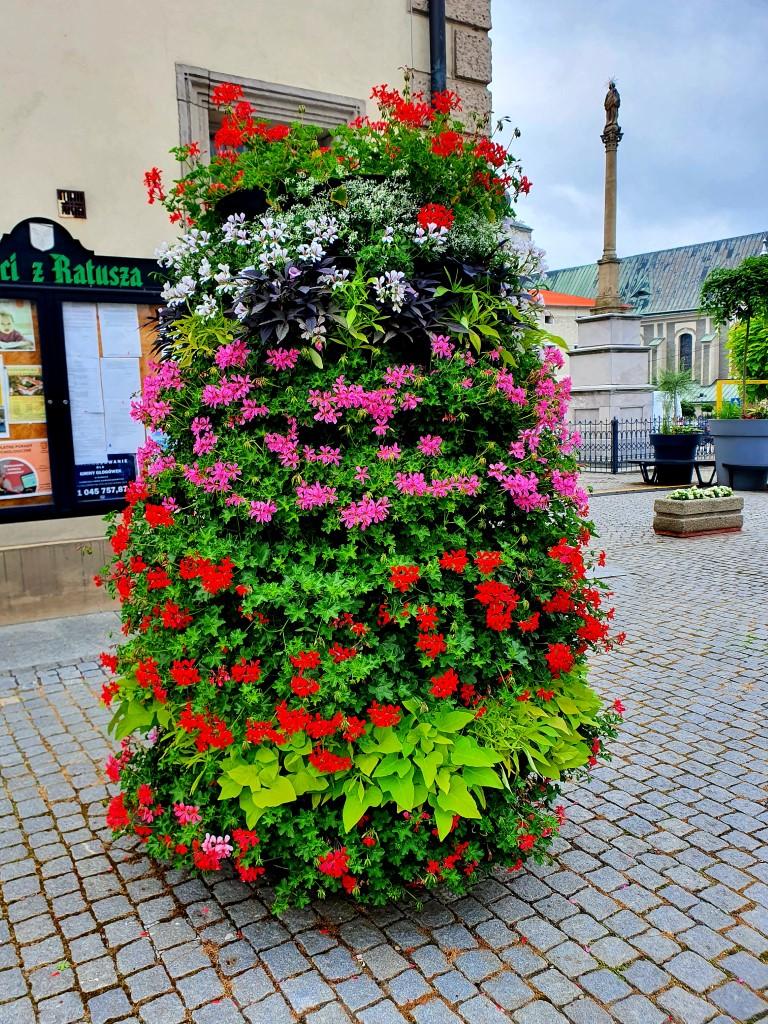 kolorowa-kompozycja-kwiatowa-autor-karolina-Glogowek