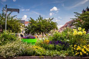 laki-kwietne-ukwiecenie-miasta-kwietniki-miejskie-wieze-kwiatowe-duze-donice-gianto-terraform-oschatz