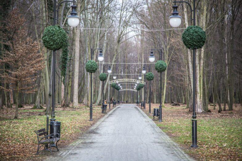 ozdoby-swiateczne-w-parku
