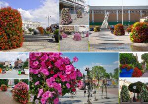 terra-flower-power-najpiekniej-ukwiecone-miasto-w-polsce