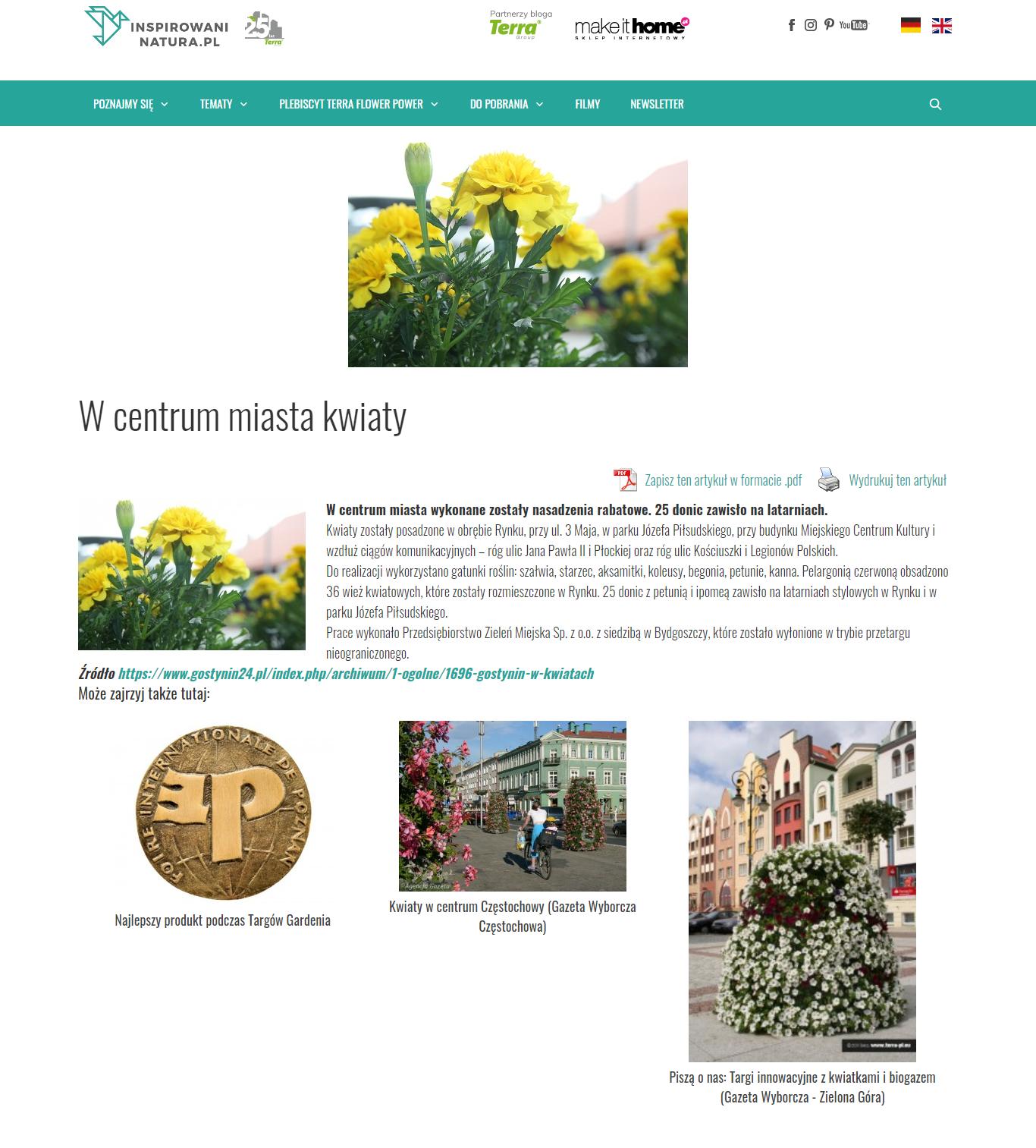 wpis-w-centrum-miasta-kwiaty