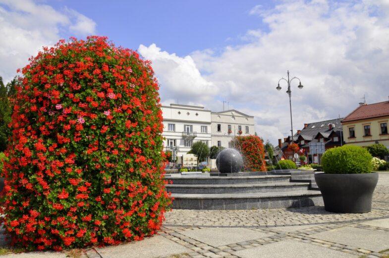 wieza-kwiatowa-czerwona-pelargonia-kety-autor-barbara