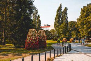 Miasta wołają o zieleń