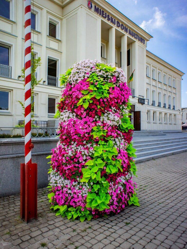 wieze-kwiatowe-w-stalowej-woli-autor-Kasia