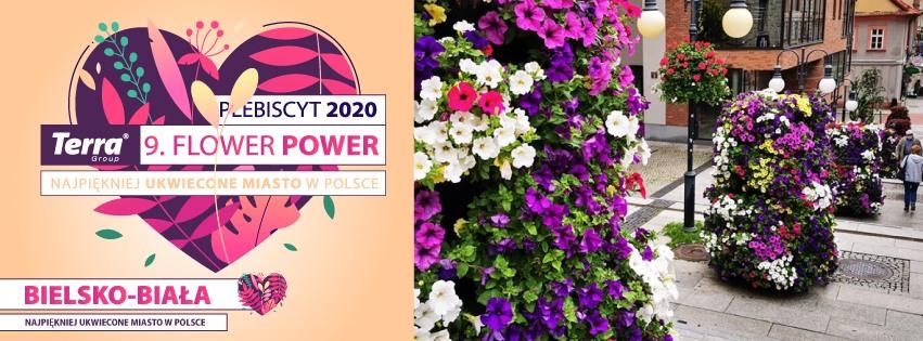 terra flower power 2020